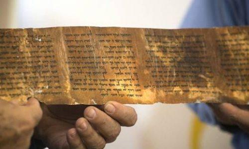 I tredici Codici e i loro scritti